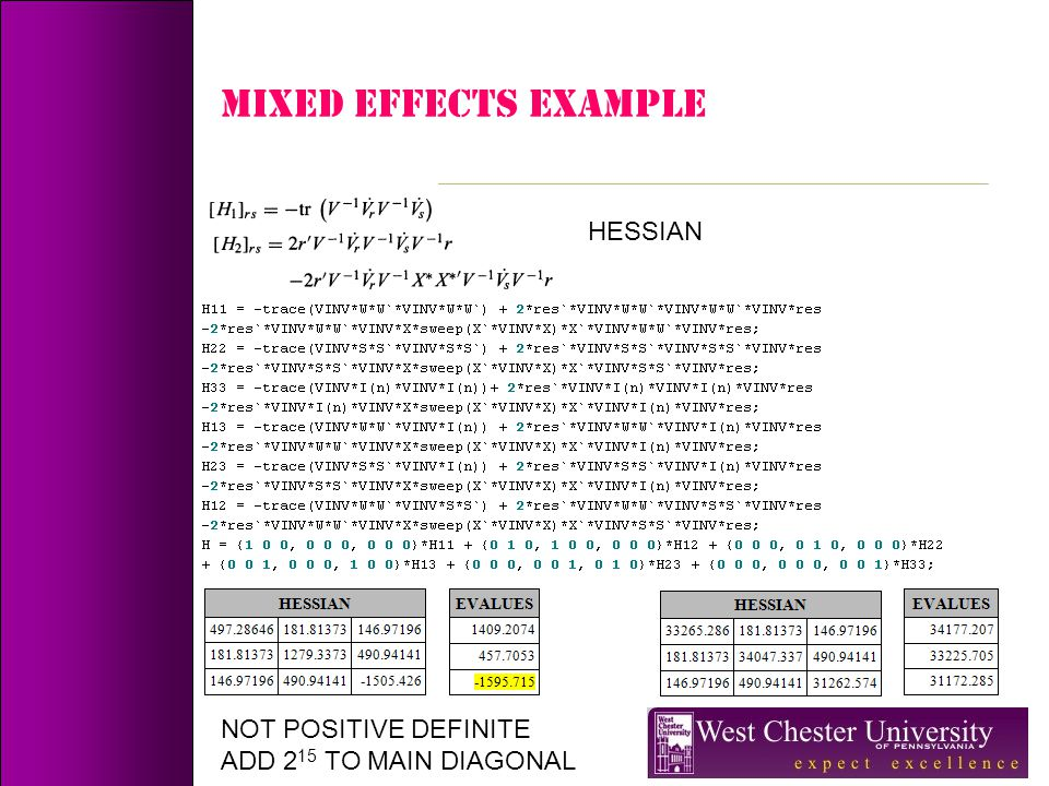 MIXED EFFECTS Example HESSIAN NOT POSITIVE DEFINITE