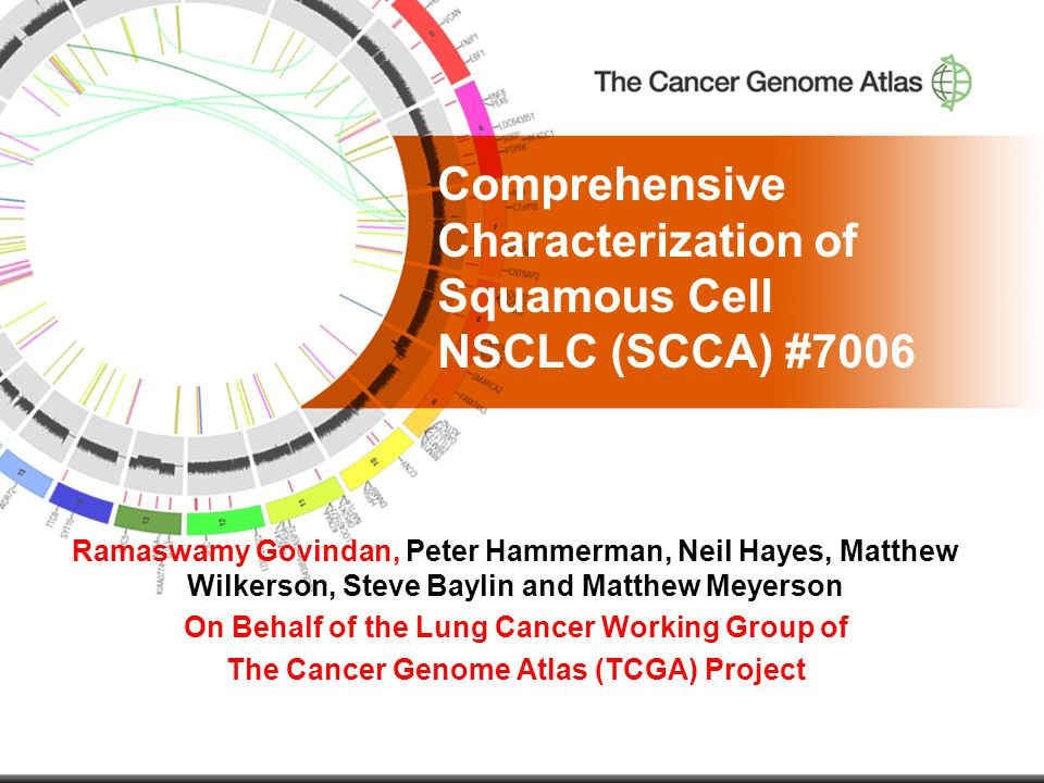 Comprehensive Characterization of Squamous Cell NSCLC (SCCA) #7006