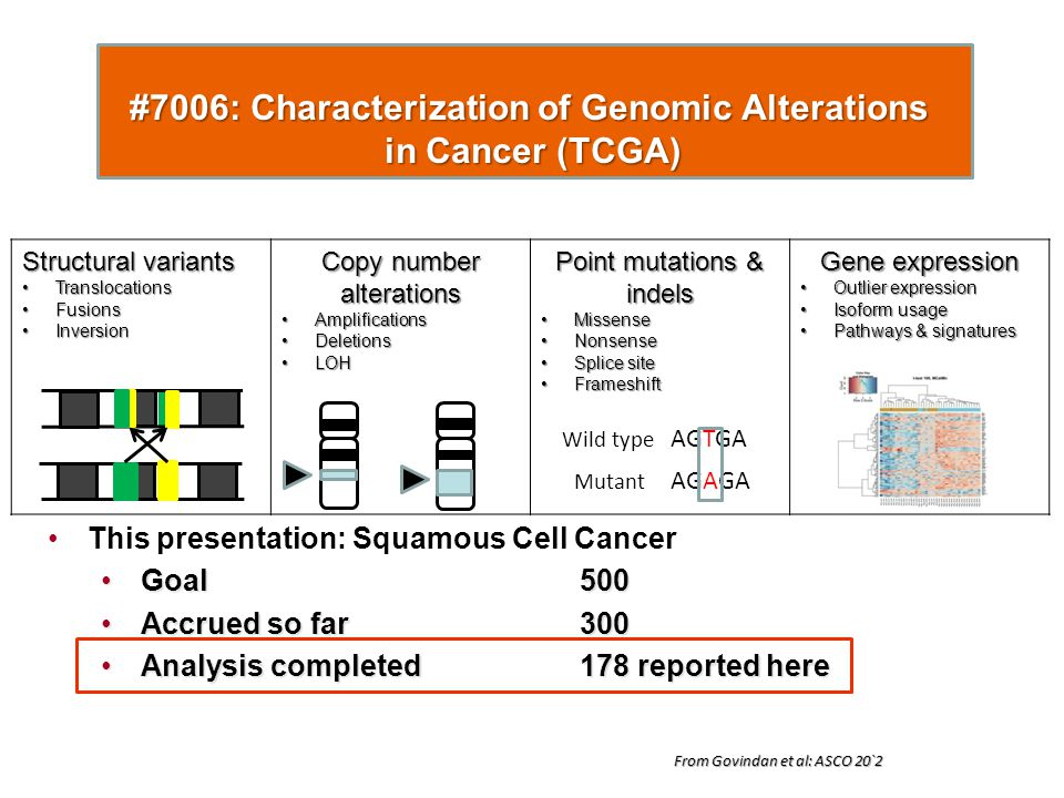#7006: Characterization of Genomic Alterations