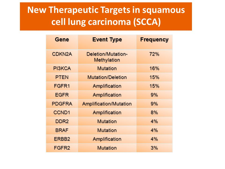New Therapeutic Targets in squamous cell lung carcinoma (SCCA)
