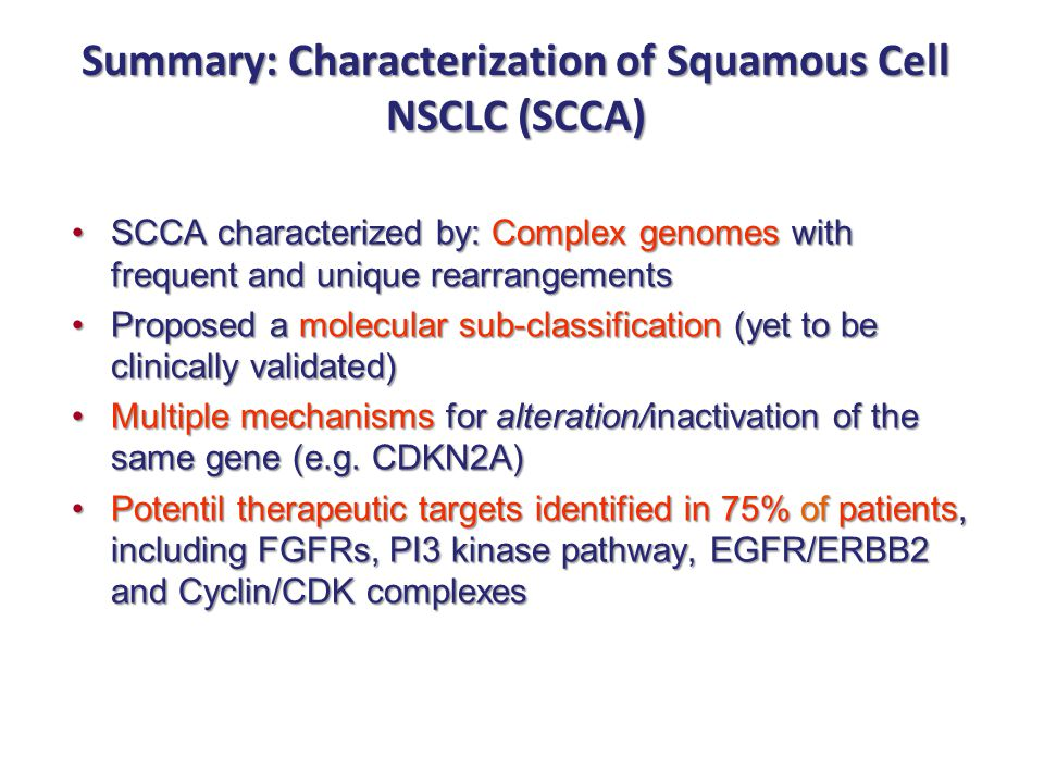Summary: Characterization of Squamous Cell NSCLC (SCCA)