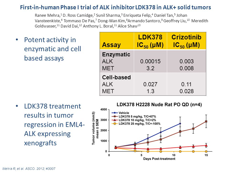 Potent activity in enzymatic and cell based assays