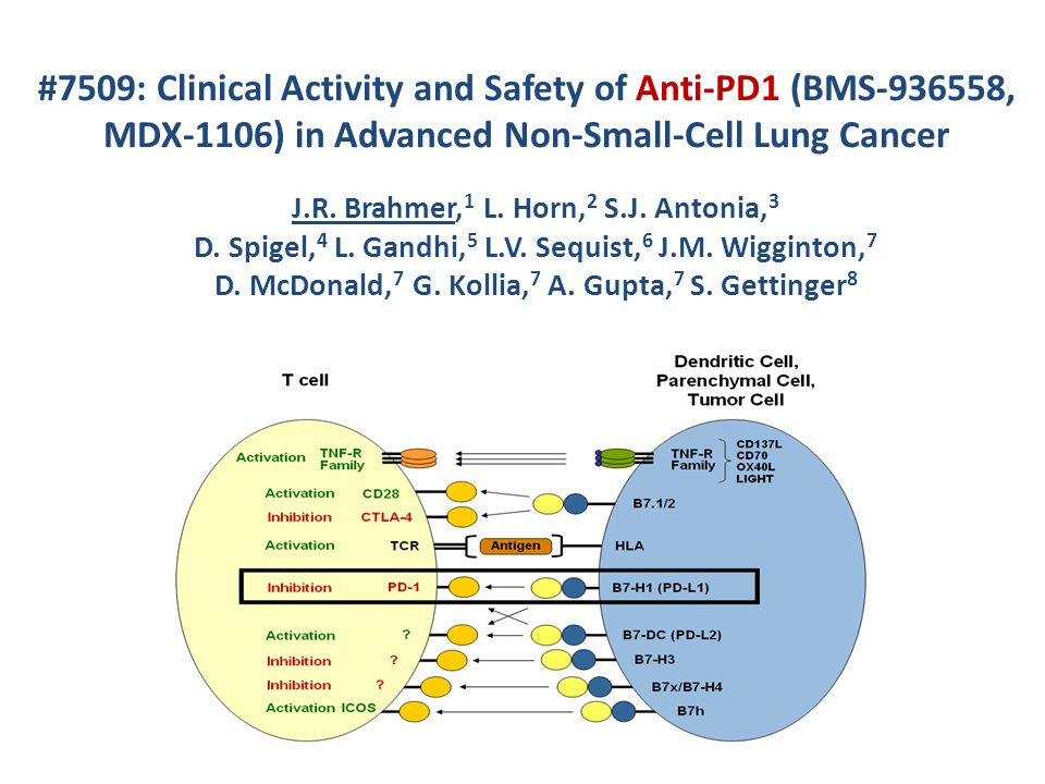 #7509: Clinical Activity and Safety of Anti-PD1 (BMS-936558, MDX-1106) in Advanced Non-Small-Cell Lung Cancer