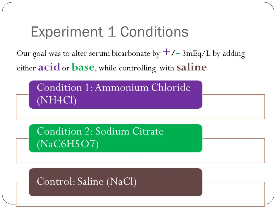 Experiment 1 Conditions