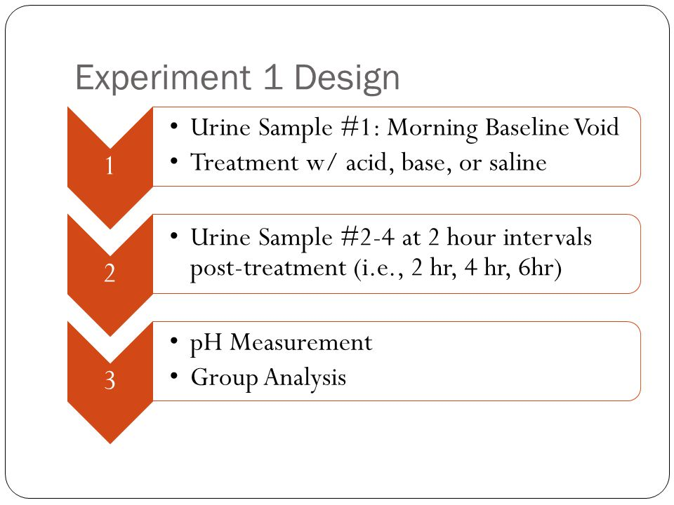 Experiment 1 Design 1 Urine Sample #1: Morning Baseline Void