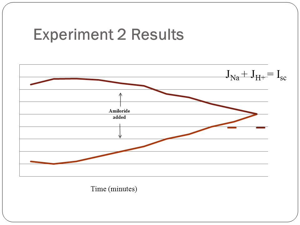 Experiment 2 Results JNa + JH+ = Isc Time (minutes) Amiloride added