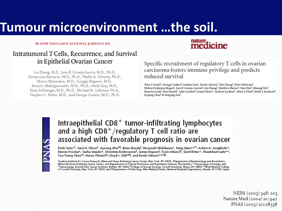 Tumour microenvironment …the soil.