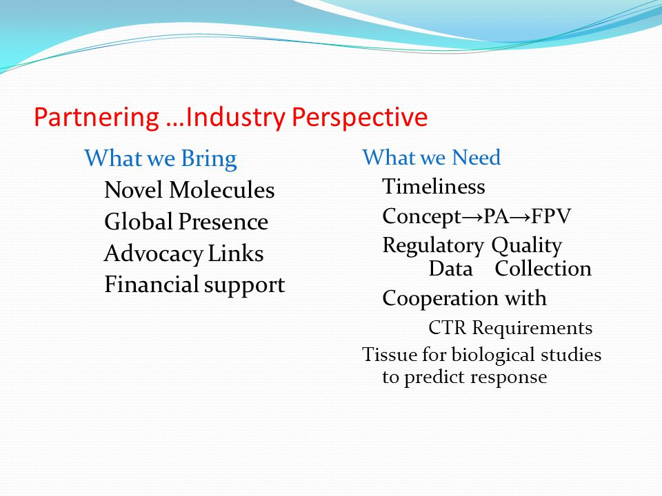 Partnering …Industry Perspective