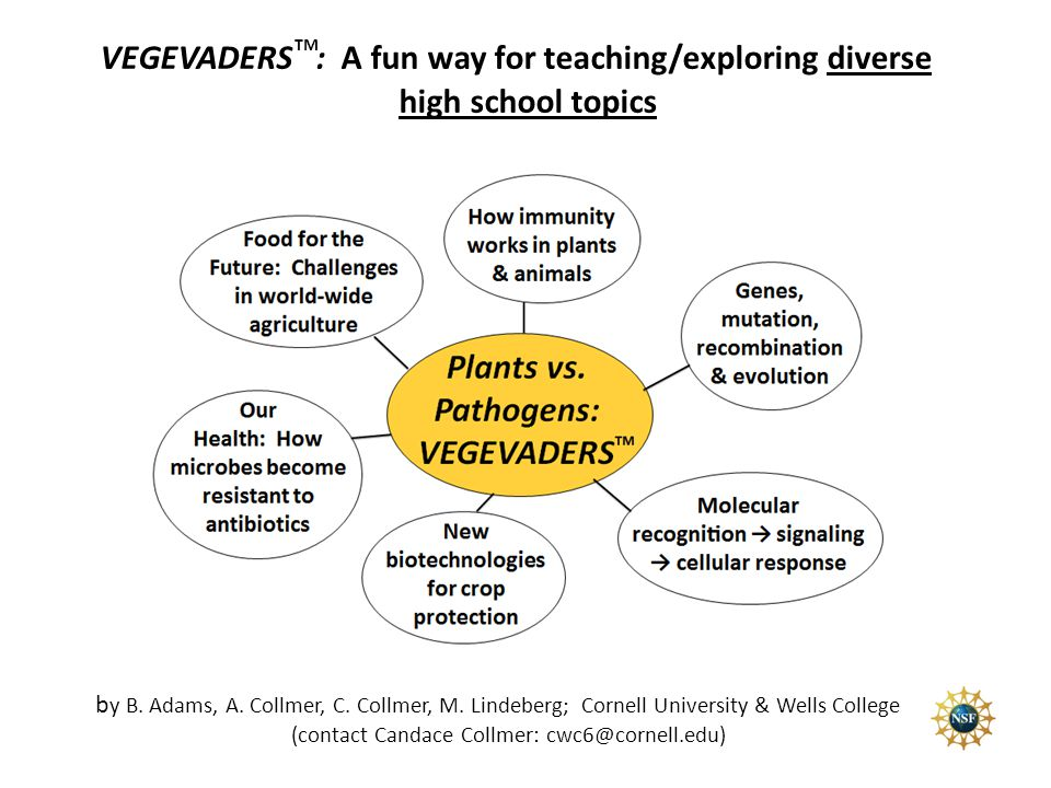VEGEVADERS : A fun way for teaching/exploring diverse high school topics