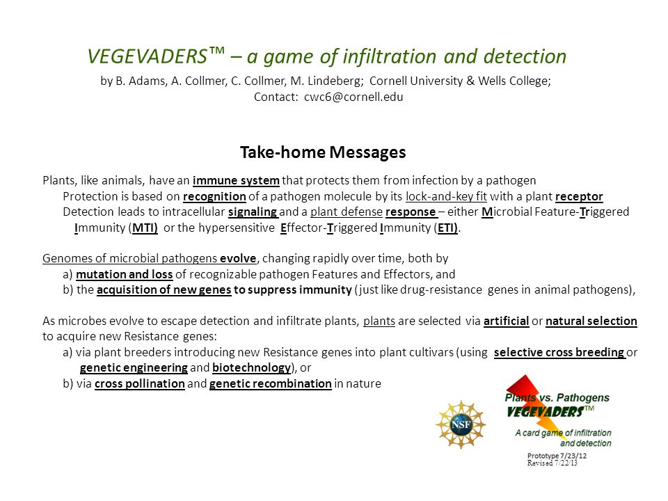 VEGEVADERS – a game of infiltration and detection