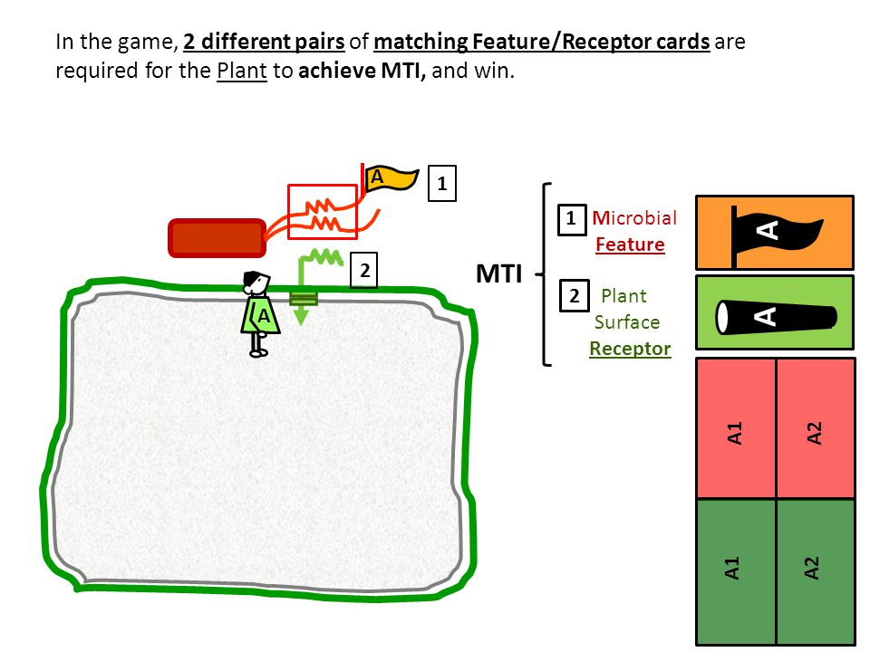 In the game, 2 different pairs of matching Feature/Receptor cards are required for the Plant to achieve MTI, and win.