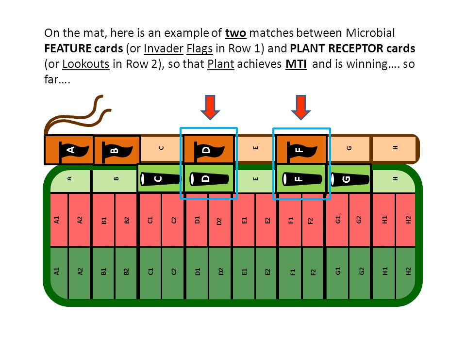 On the mat, here is an example of two matches between Microbial FEATURE cards (or Invader Flags in Row 1) and PLANT RECEPTOR cards (or Lookouts in Row 2), so that Plant achieves MTI and is winning…. so far….