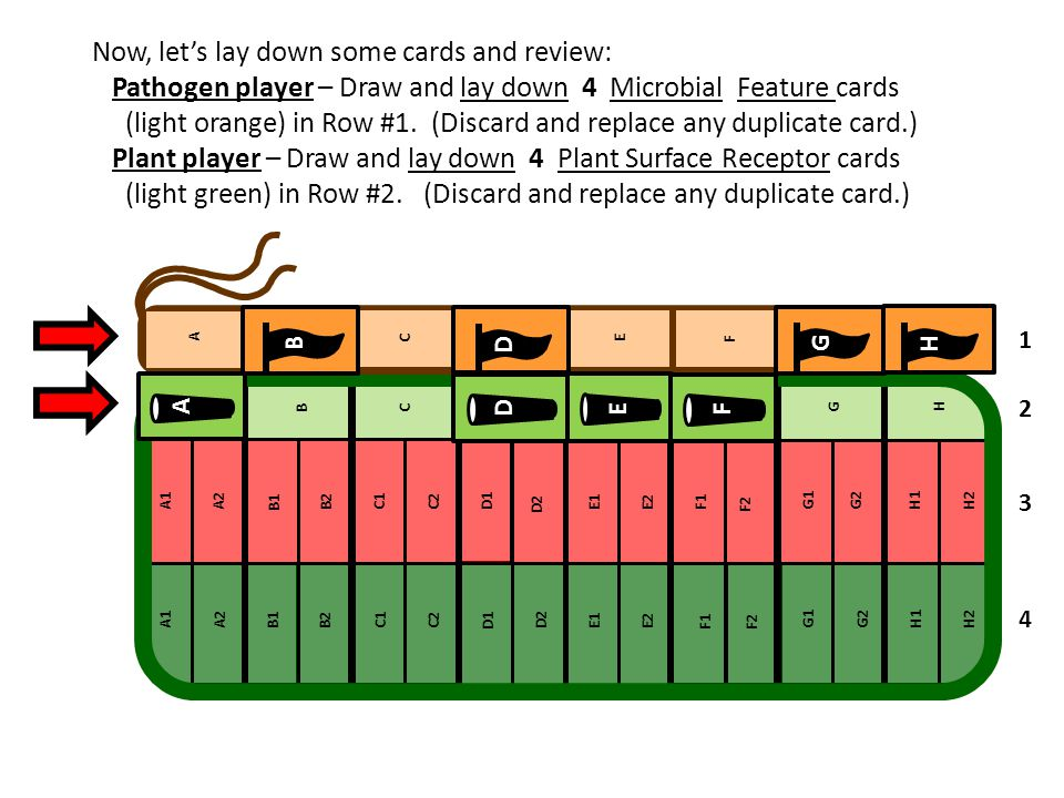 Now, let's lay down some cards and review: