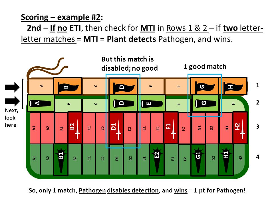 Scoring – example #2: 2nd – If no ETI, then check for MTI in Rows 1 & 2 – if two letter-letter matches = MTI = Plant detects Pathogen, and wins.