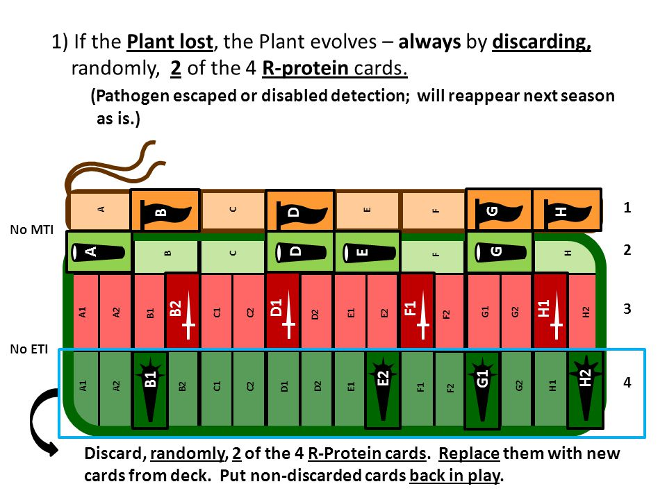 1) If the Plant lost, the Plant evolves – always by discarding, randomly, 2 of the 4 R-protein cards.