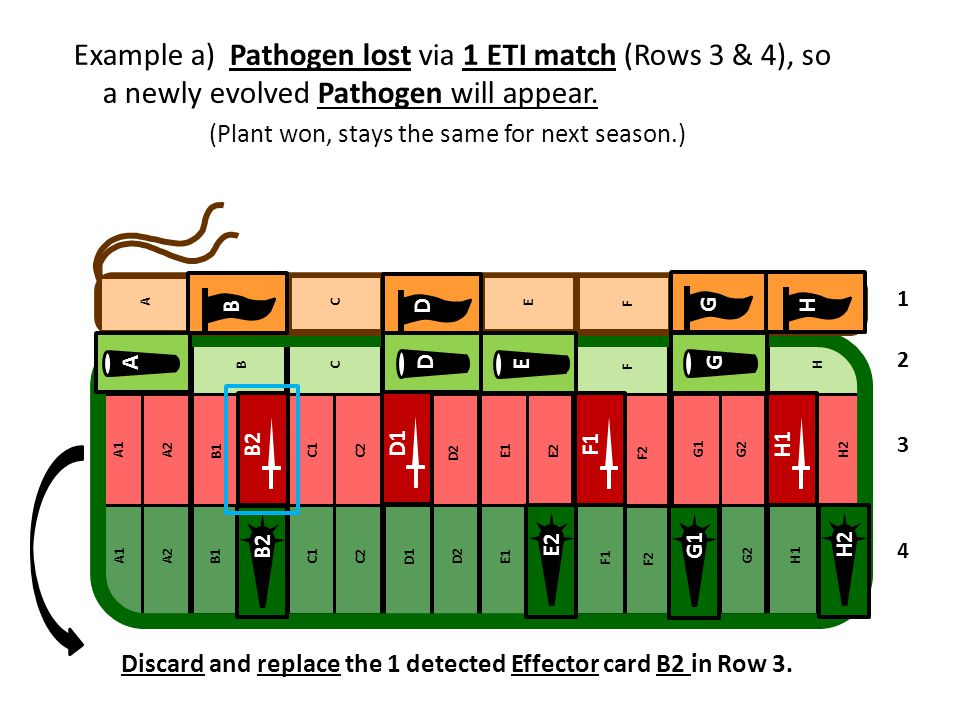 Example a) Pathogen lost via 1 ETI match (Rows 3 & 4), so a newly evolved Pathogen will appear. (Plant won, stays the same for next season.)