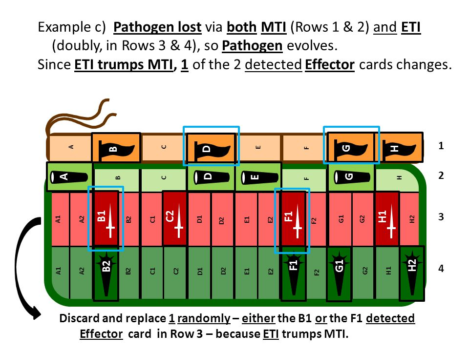 Example c) Pathogen lost via both MTI (Rows 1 & 2) and ETI (doubly, in Rows 3 & 4), so Pathogen evolves. Since ETI trumps MTI, 1 of the 2 detected Effector cards changes.