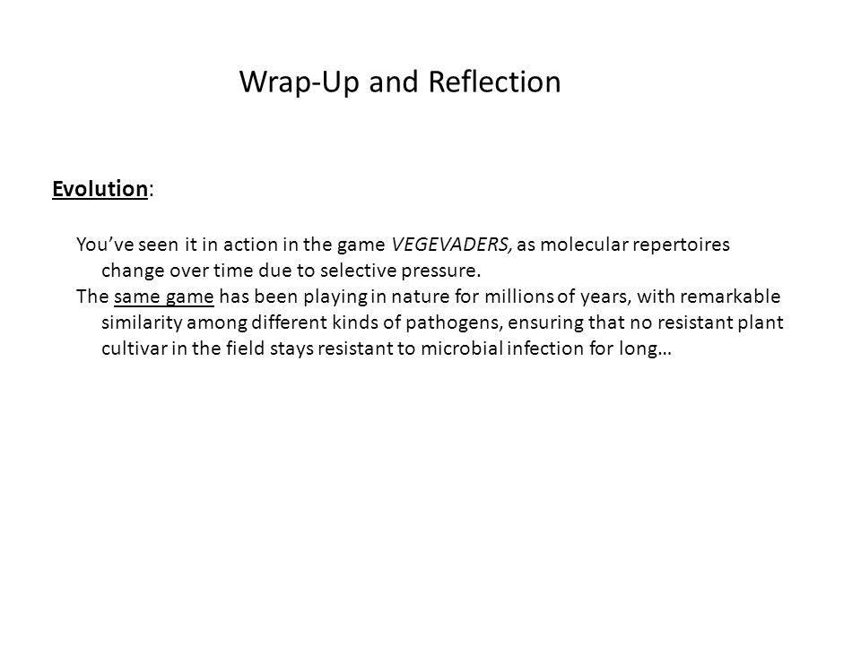 Wrap-Up and Reflection