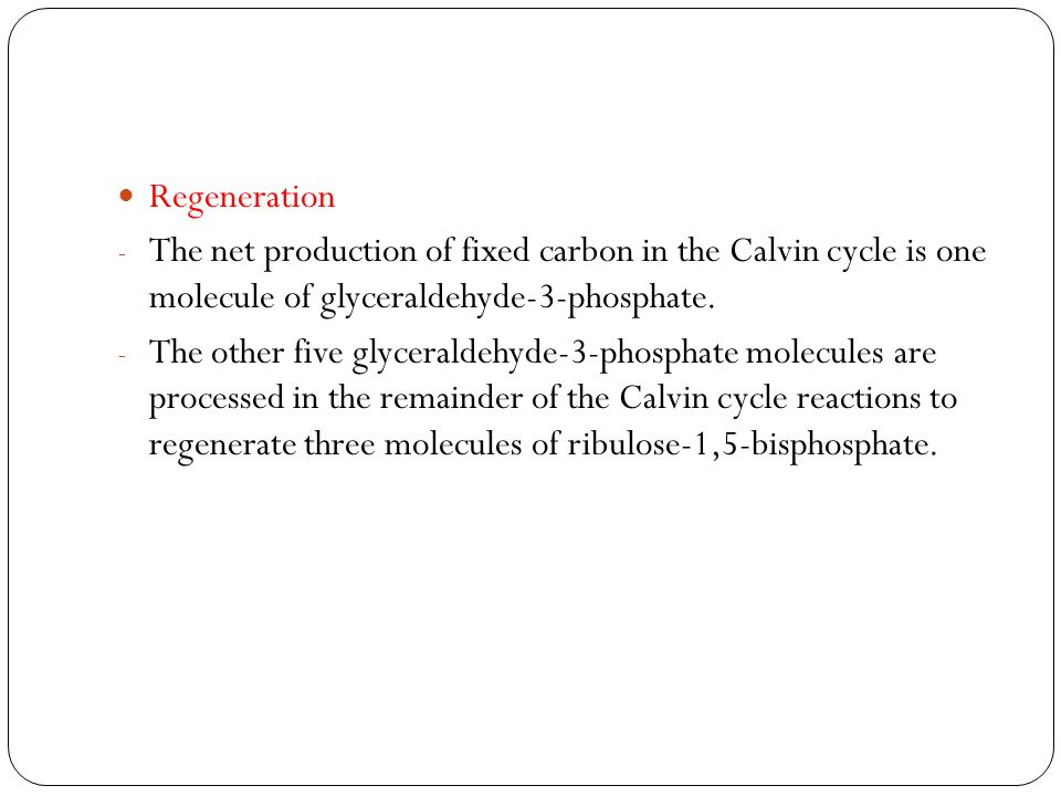 Regeneration The net production of fixed carbon in the Calvin cycle is one molecule of glyceraldehyde-3-phosphate.
