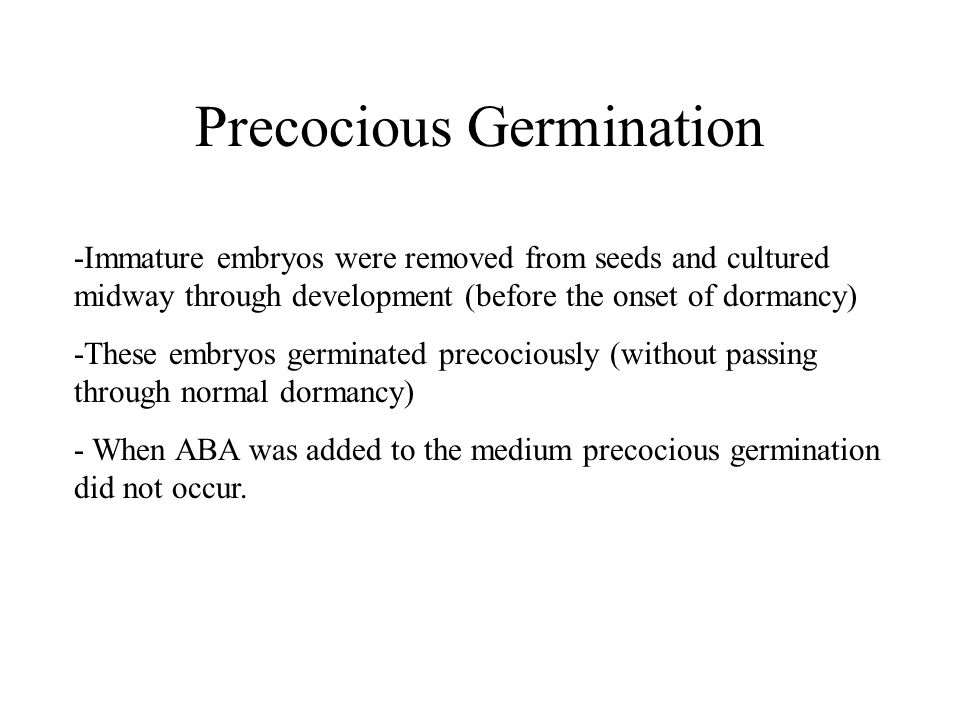 Precocious Germination