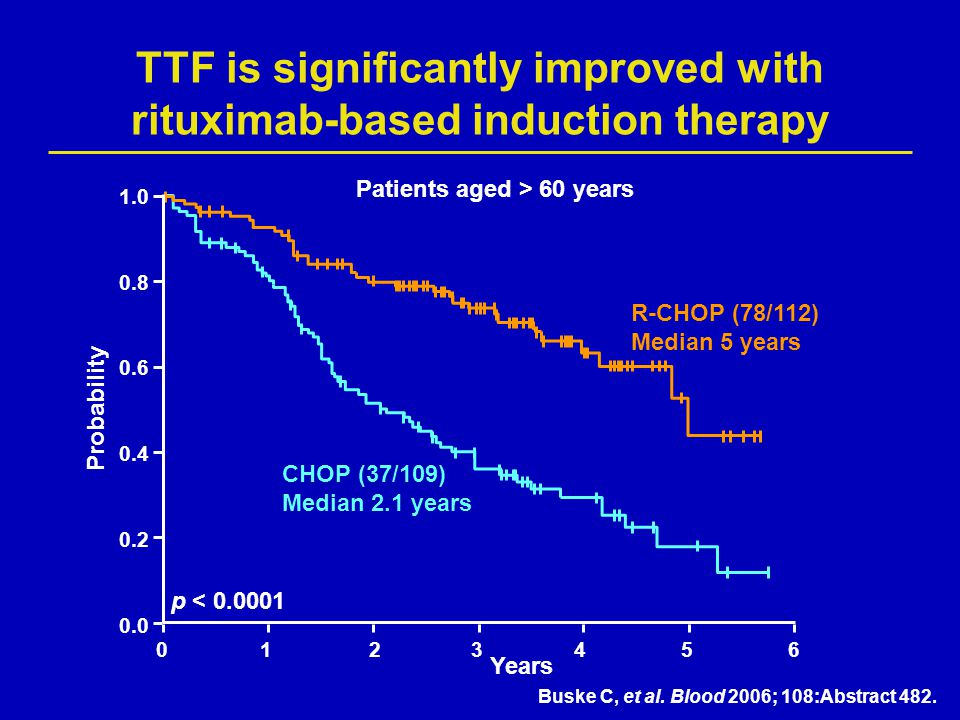 TTF is significantly improved with rituximab-based induction therapy