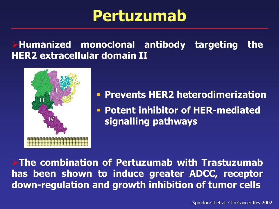 Pertuzumab Humanized monoclonal antibody targeting the HER2 extracellular domain II. Prevents HER2 heterodimerization.