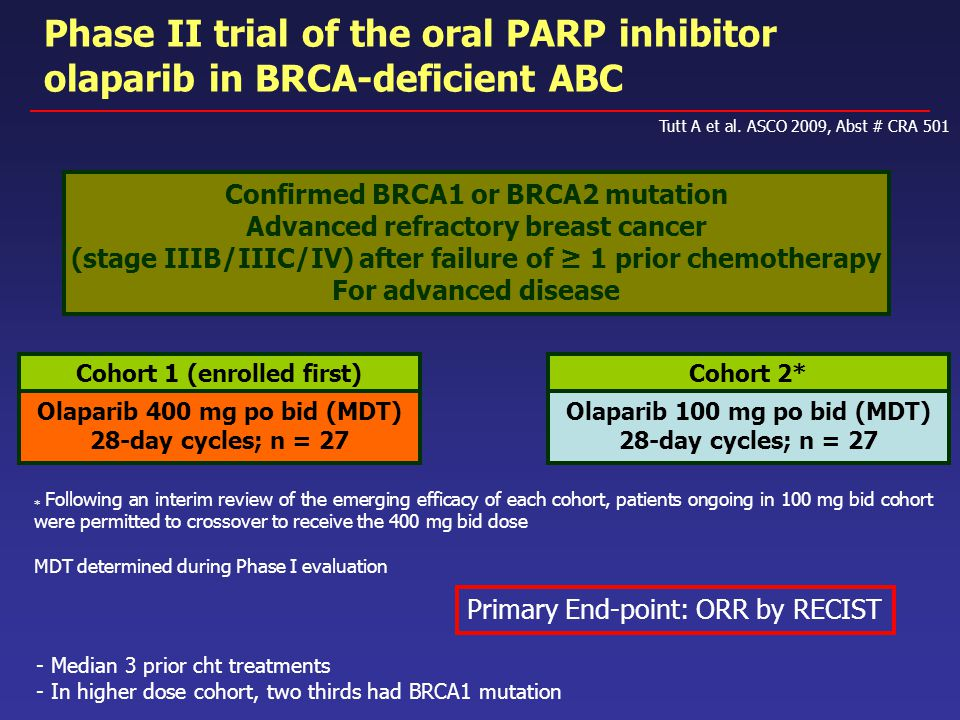 Phase II trial of the oral PARP inhibitor olaparib in BRCA-deficient ABC