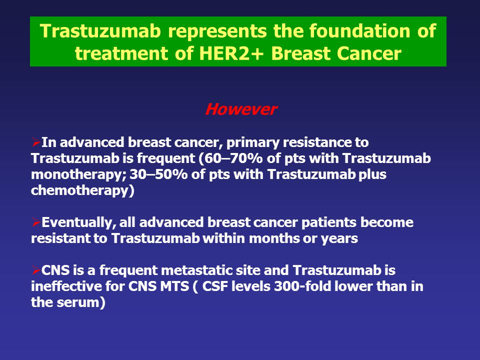 Trastuzumab represents the foundation of