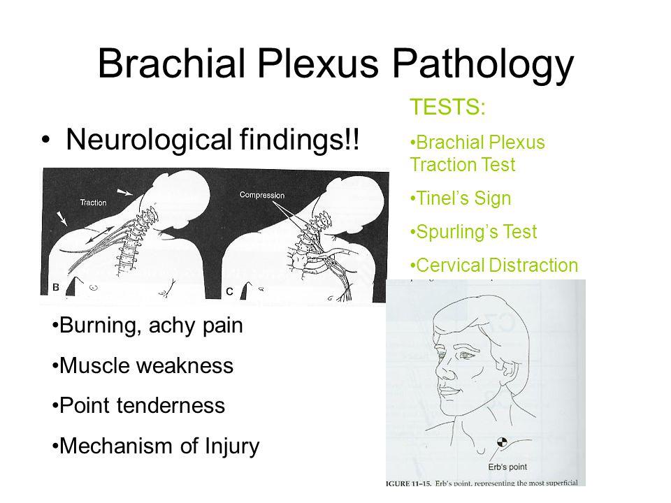 Brachial Plexus Pathology