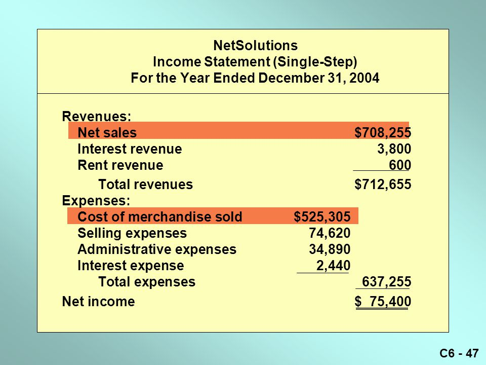 NetSolutions Income Statement (Single-Step) For the Year Ended December 31, 2004