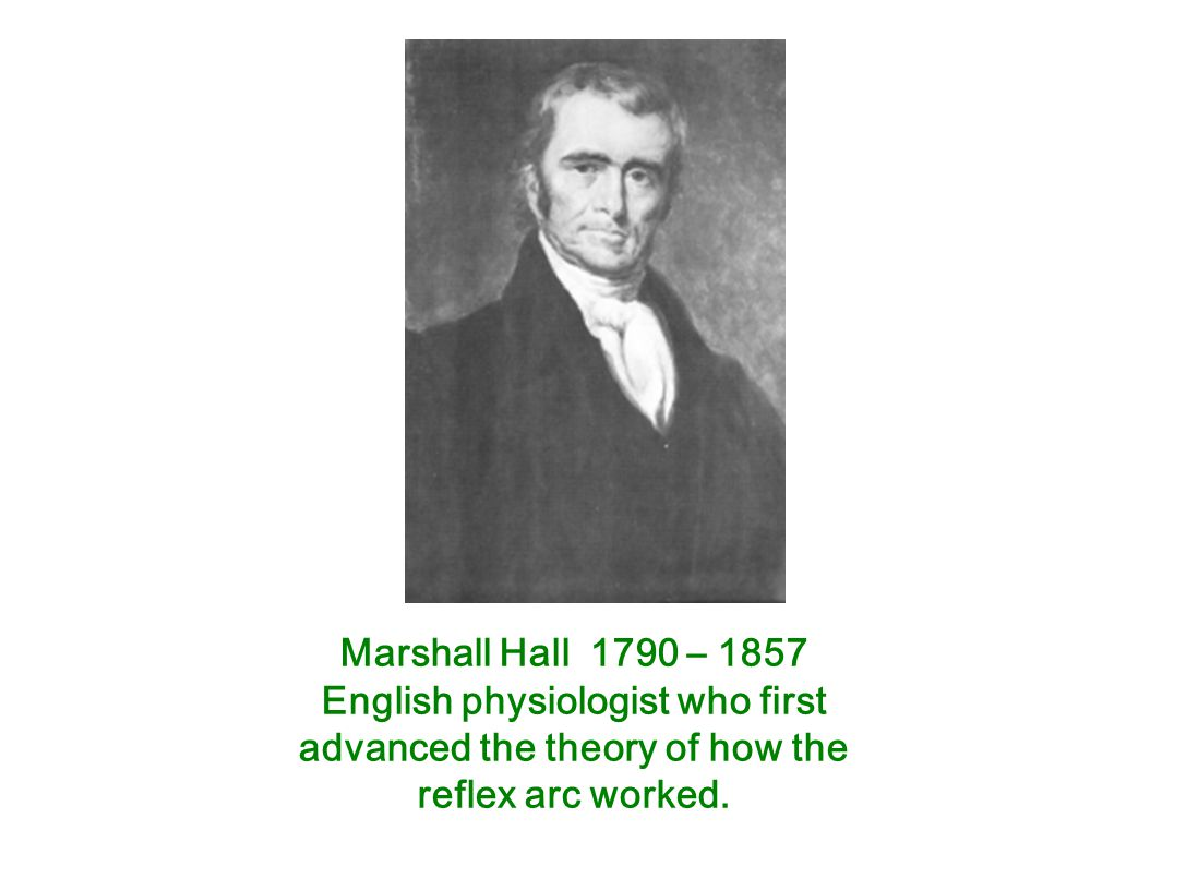 English physiologist who first advanced the theory of how the