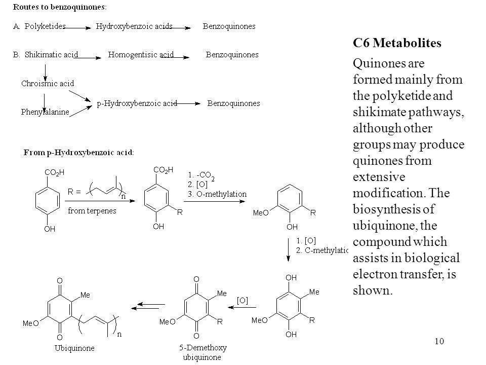 C6 Metabolites