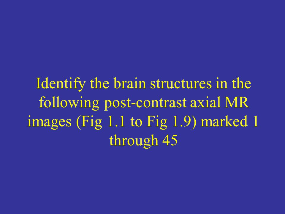 Identify the brain structures in the following post-contrast axial MR images (Fig 1.1 to Fig 1.9) marked 1 through 45