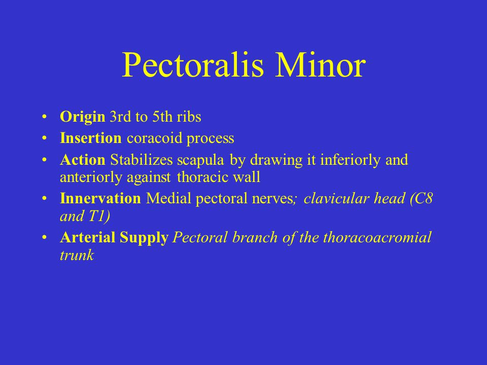 Pectoralis Minor Origin 3rd to 5th ribs Insertion coracoid process