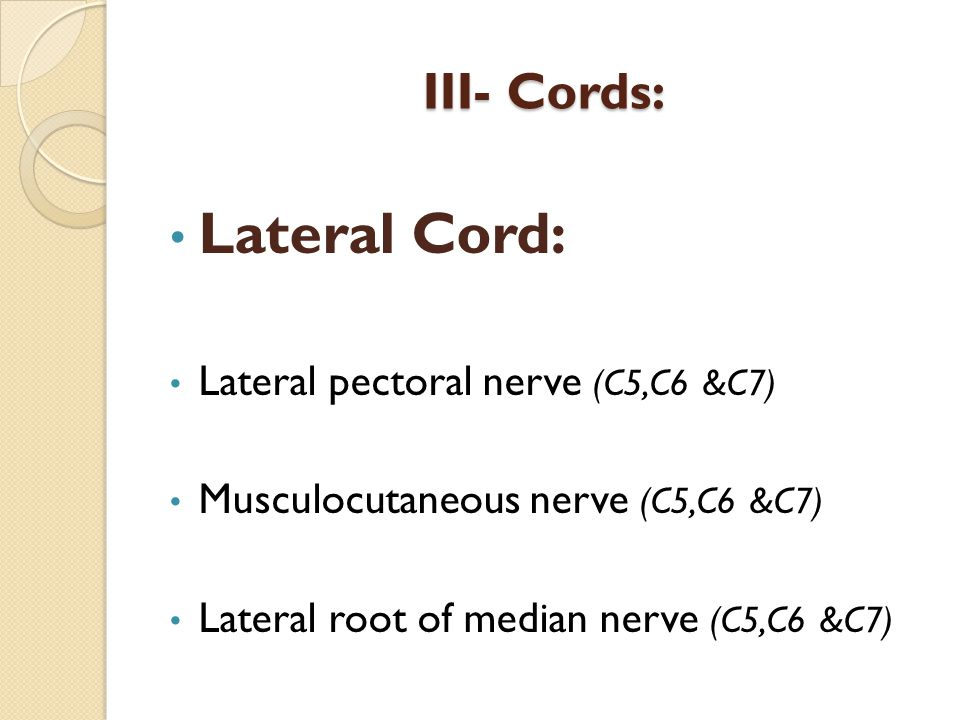 Lateral Cord: III- Cords: Lateral pectoral nerve (C5,C6 &C7)