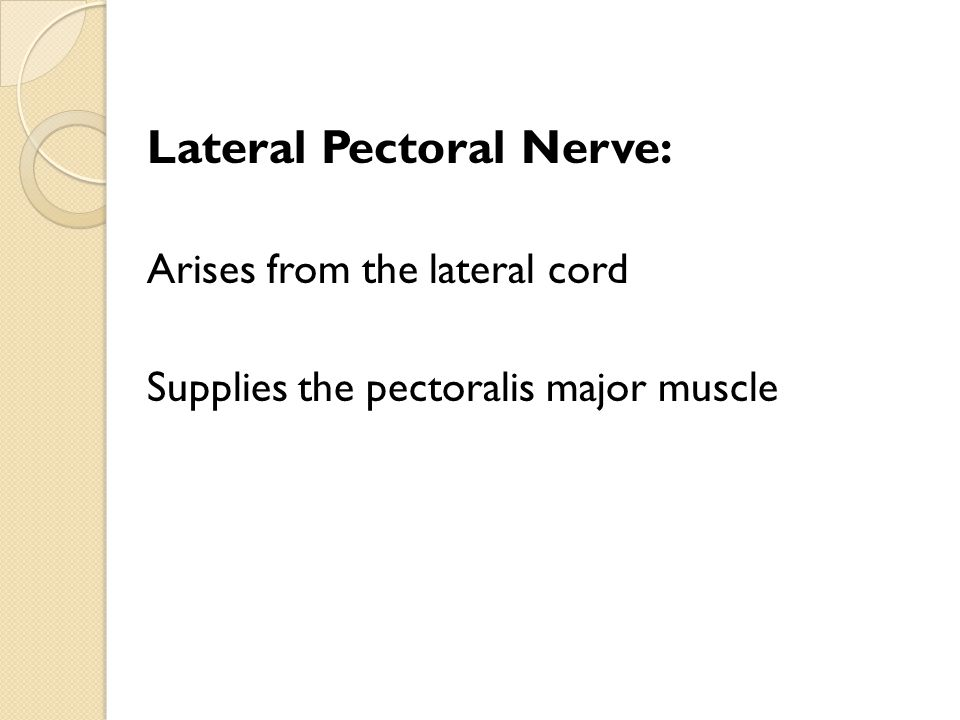 Lateral Pectoral Nerve: