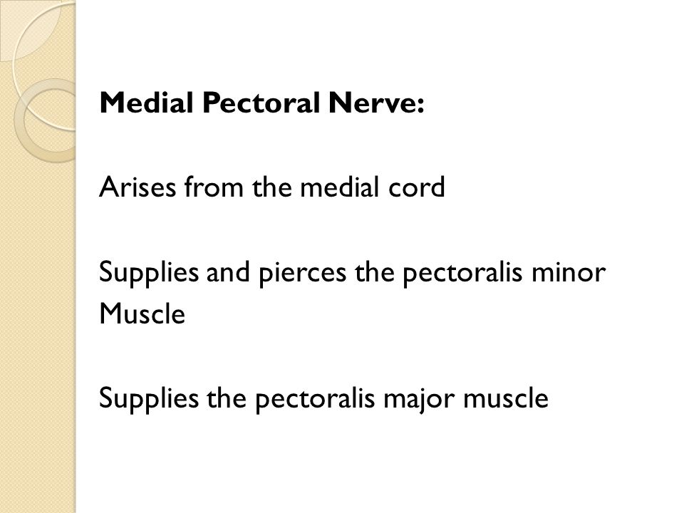 Medial Pectoral Nerve: Arises from the medial cord Supplies and pierces the pectoralis minor Muscle Supplies the pectoralis major muscle
