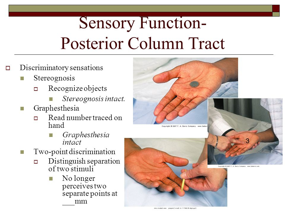 Sensory Function- Posterior Column Tract