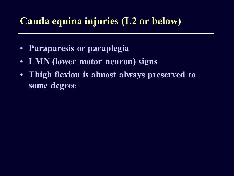 Cauda equina injuries (L2 or below)