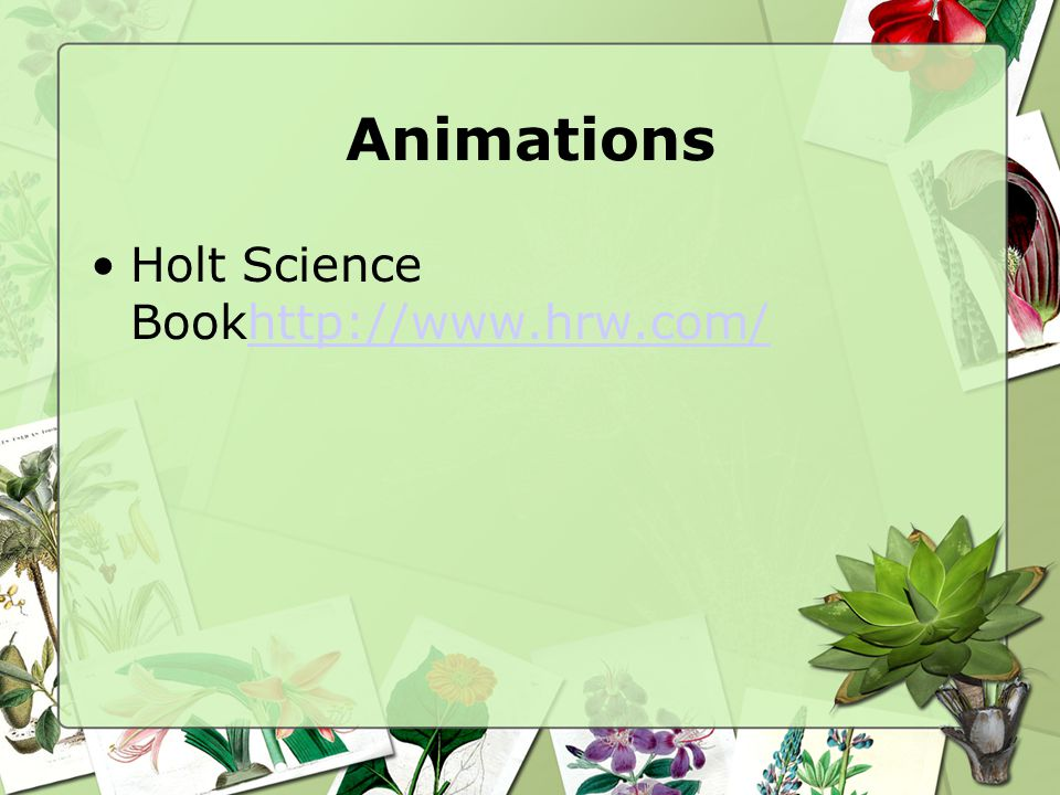 Animations Holt Science Bookhttp://www.hrw.com/