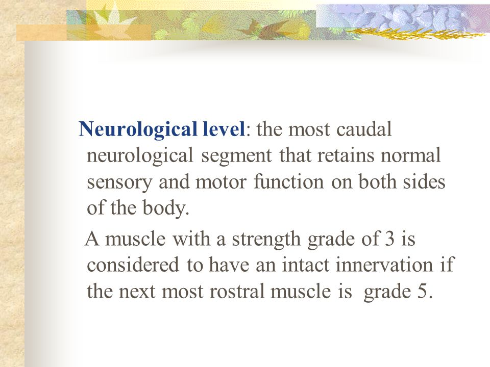 Neurological level: the most caudal neurological segment that retains normal sensory and motor function on both sides of the body.