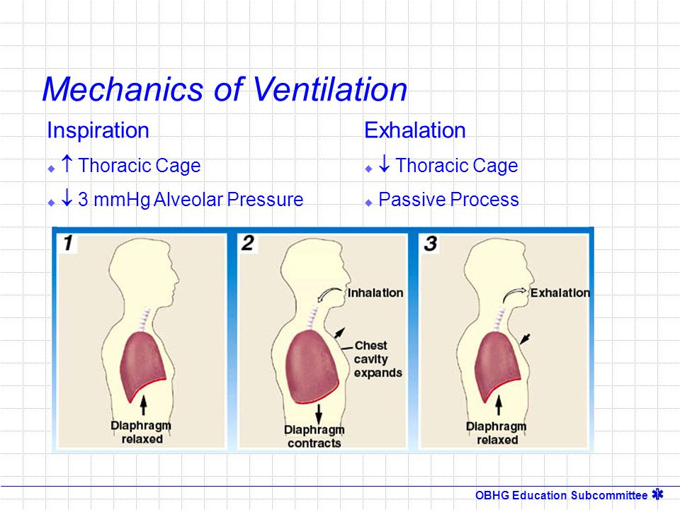 Mechanics of Ventilation