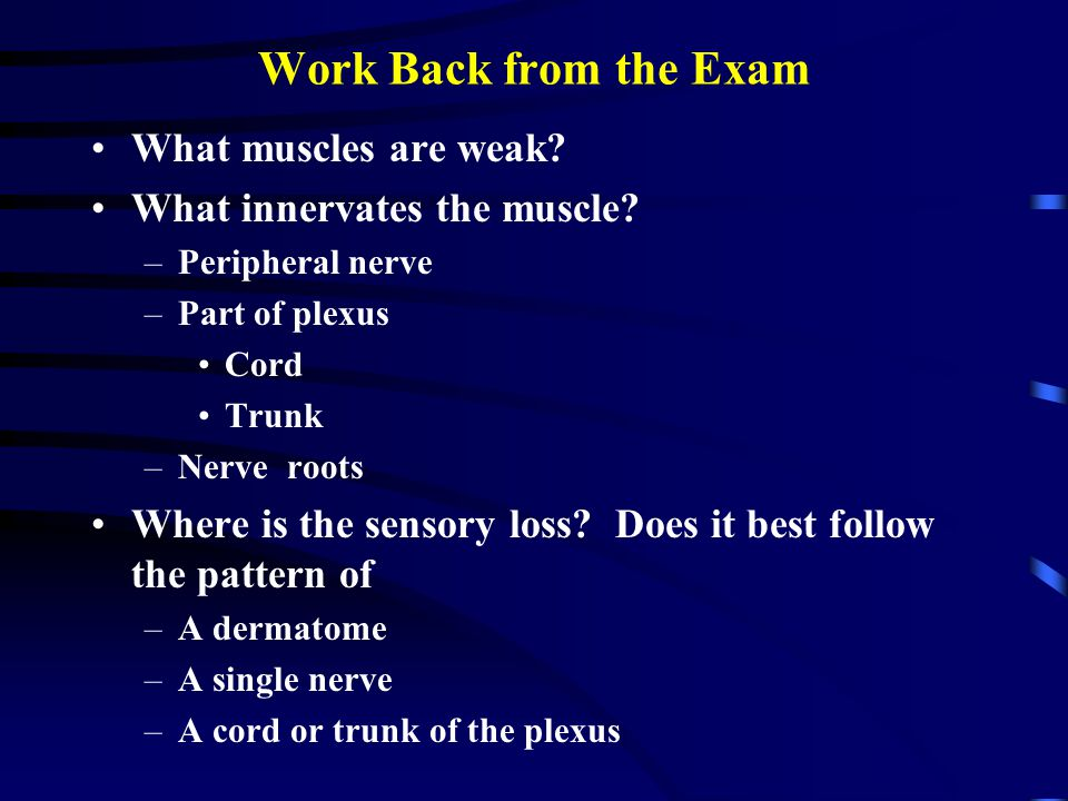 Work Back from the Exam What muscles are weak