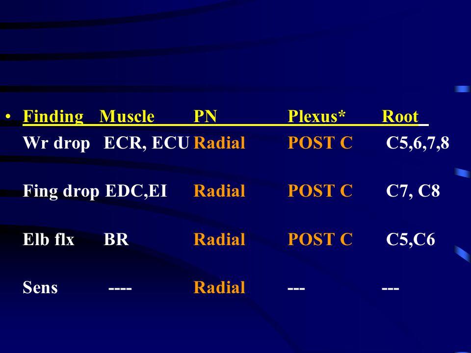 Finding Muscle PN Plexus* Root