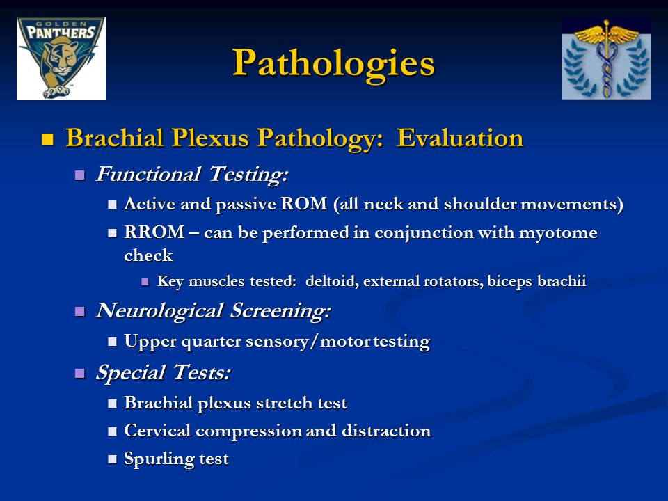 Pathologies Brachial Plexus Pathology: Evaluation Functional Testing:
