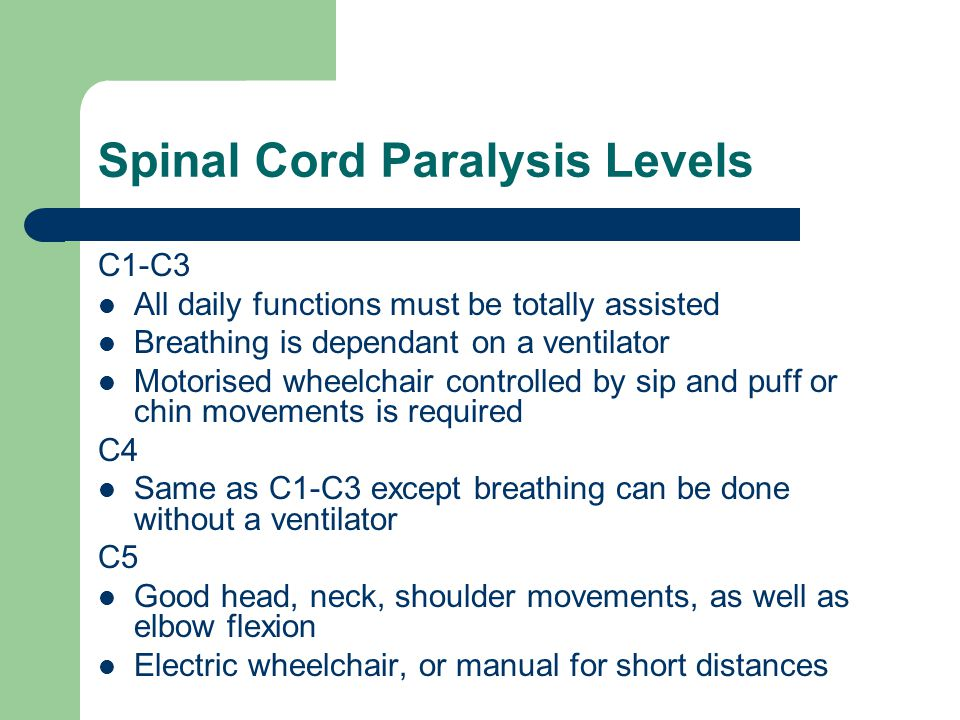 Spinal Cord Paralysis Levels