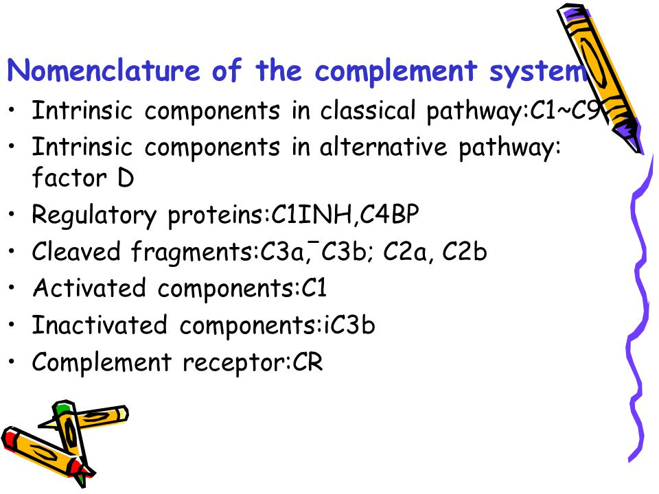 Nomenclature of the complement system