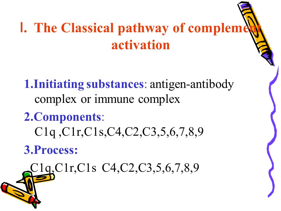 Ⅰ. The Classical pathway of complement activation