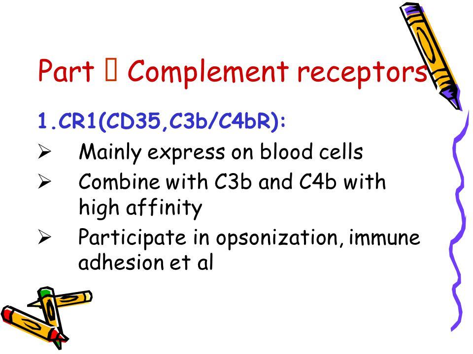 Part Ⅳ Complement receptors