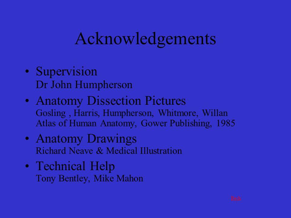 Acknowledgements Supervision Dr John Humpherson